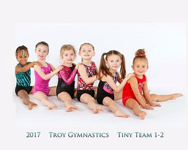 Tiny Team 1 & 2