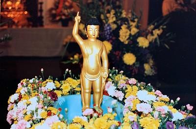 Buddhist Slides (NY State)