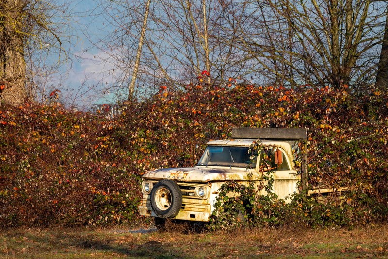RustyDodgeTruck.jpg