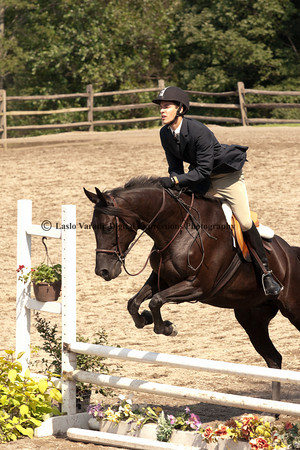 Open Equitation/Schooling Hunt