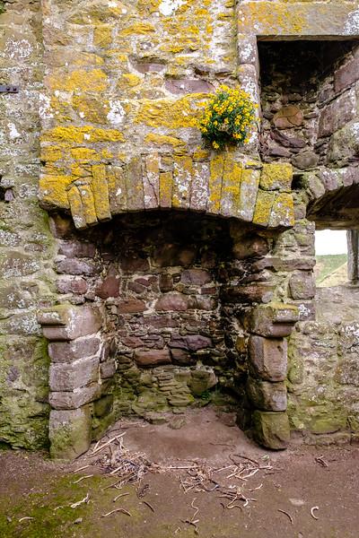 20190508 Dunnottar Castle 057.jpg
