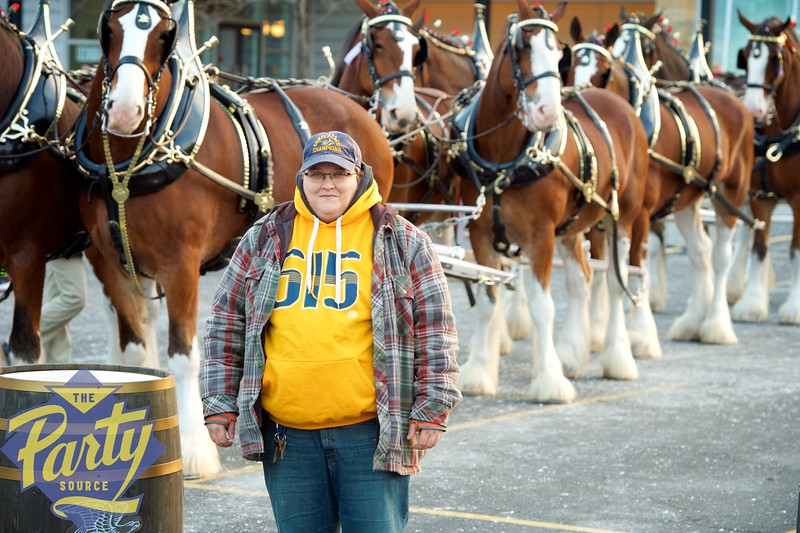 Clydesdale Portraits 225.jpg