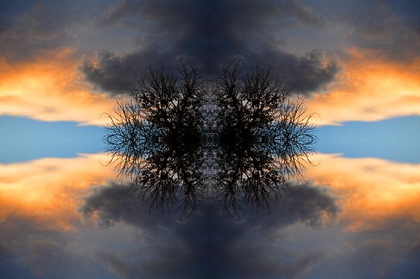 Tessellation Photo Art