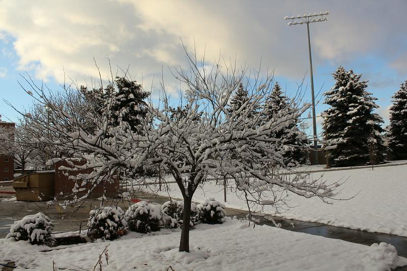 Winter_Scenery_12_19_2012_4060.JPG