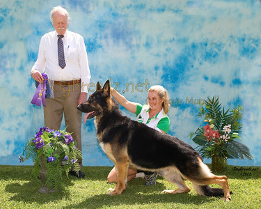 German Shepherd Dog Club of America - June 2012