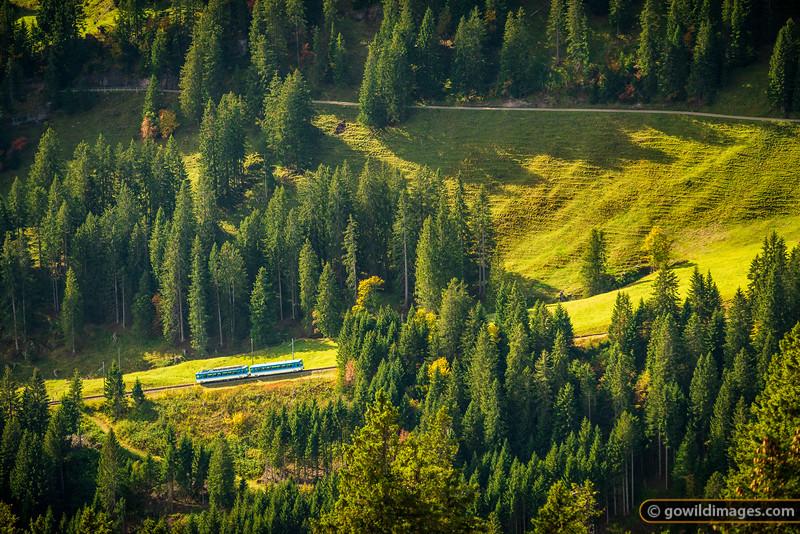 Rigi Rail