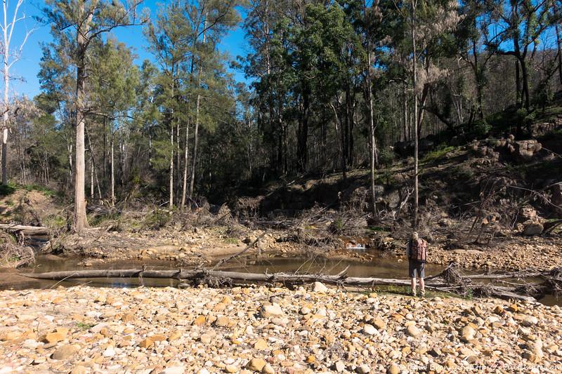 Wanganderry Creek junction