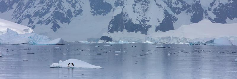 2019_01_Antarktis_02988.jpg