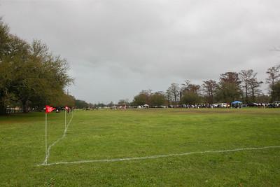 Mardi Gras - Match 11