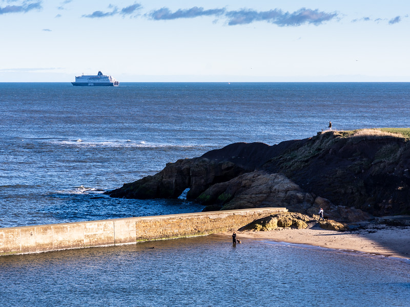dog walkers at Cullercoats Harbour