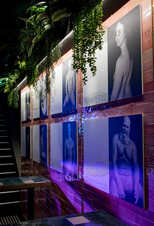 Bare Naked Truth exhibition 120621
