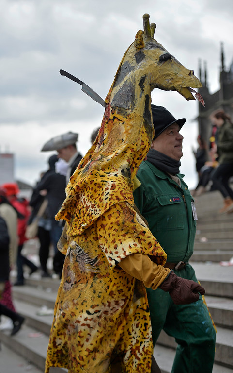 ". A man dressed up as the killed giraffe from the Copenhagen zoo walks in the street when tens of thousands of revelers dressed in carnival costumes celebrate the start of the street-carnival on the so called ""Old Women\'s Day\"" in the party capital Cologne, Germany, Thursday, Feb. 27, 2014. (AP Photo/Martin Meissner)"