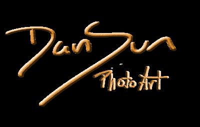 DanSun Photoart written