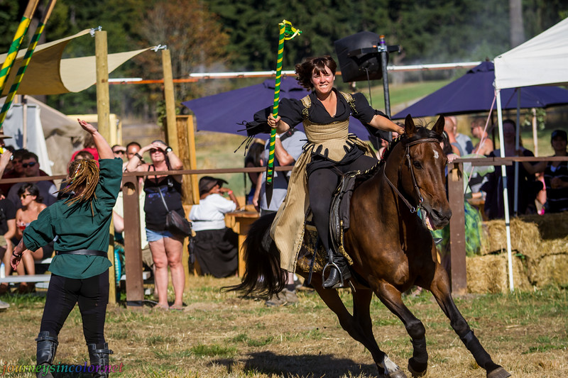 Washington_Midsummer_Ren_Faire_49.jpg