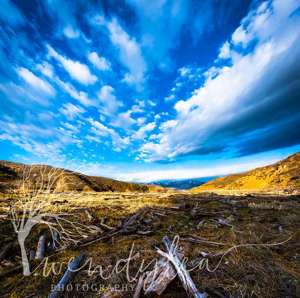 wlc Rock Cliff 2018 29-Pano-Edit.jpg
