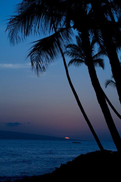 Hawaii2012-1557.jpg