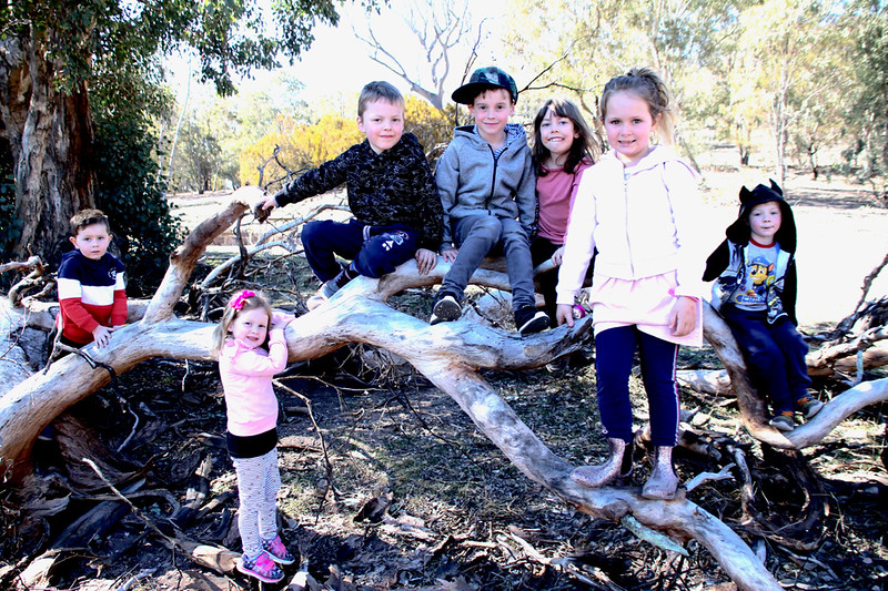 Canberra 100km 14 Sept 2019  1- - 1.jpg