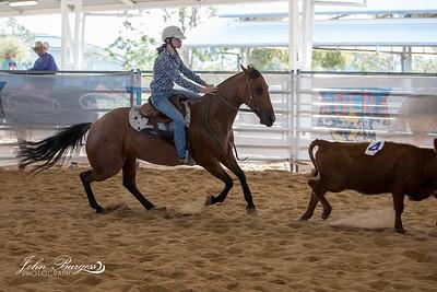 ABCRA Nationals Ranch Sorting #8