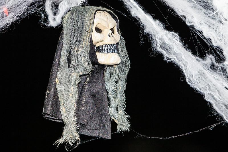 Halloween-7407.jpg