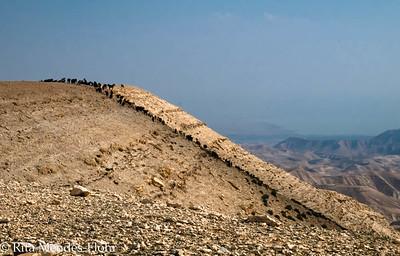 Upper Nahal Og - round trip