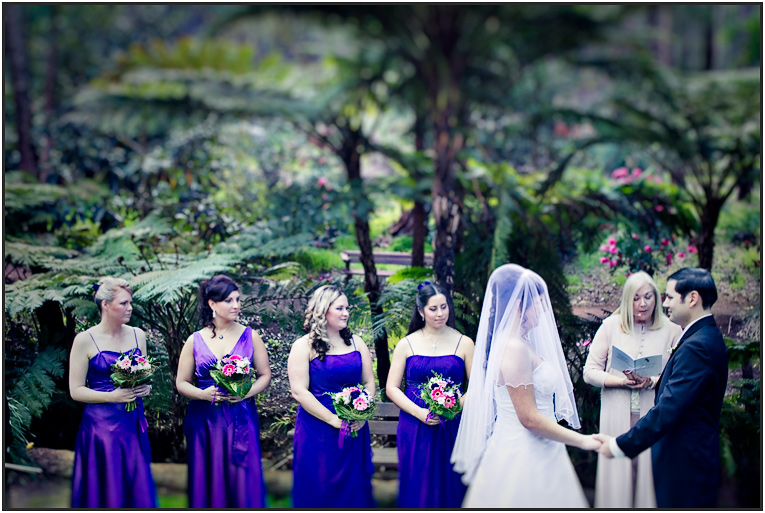 Perth Wedding Photographers Araluen Botanical Garden