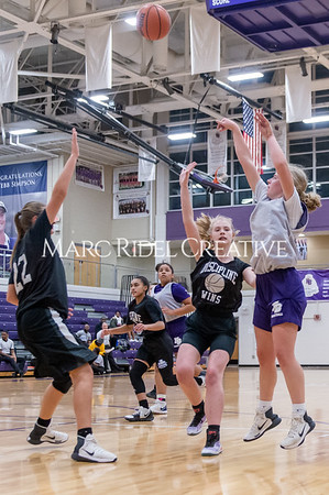 Broughton girls basketball vs Wake Forest. November 14, 2019. D4S_0339