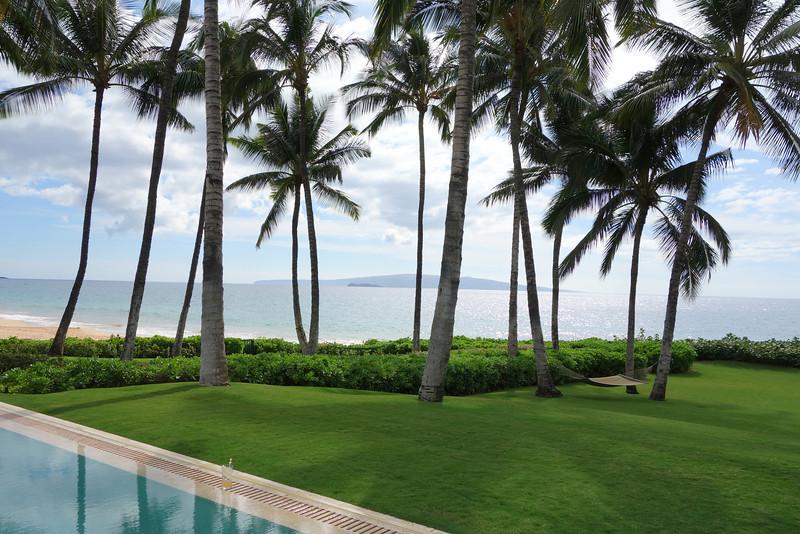 2014-02-15-0009-Maui-Hale Ohia.jpg