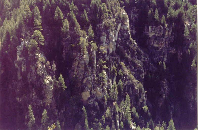 Copy of Trip12.jpg