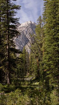 Warren Peak Loop
