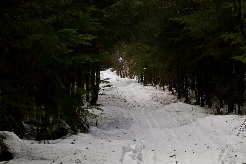 A ski path near Dredge lake.
