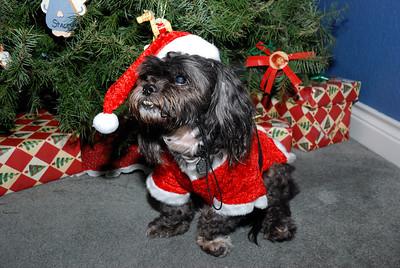 Christmas 2008 - Granbury