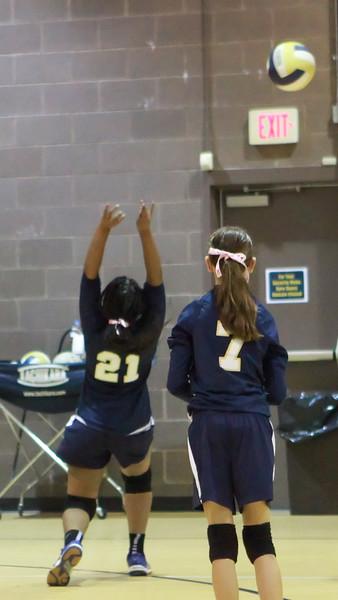 VCA-Volleyball-28.jpg
