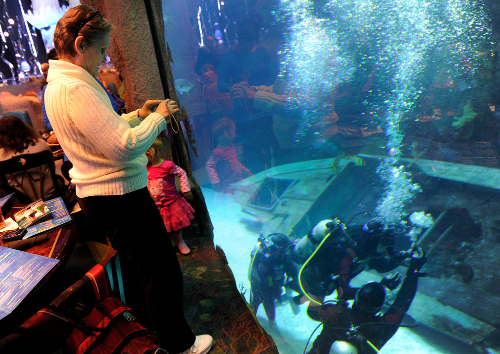 . DENVER, CO. - FEBRUARY 16: As her son Jonathan Wallace, 19, who has cerebral palsy, makes his way under water, Sharon Wallace snaps a few photos through the tank glass from the aquarium restaurant. Two teens from the Riley Children\'s Foundation are learning how to scuba dive with instructors from the A-1 Scuba and Travel Aquatics Center at the Downtown Aquarium.(Photo By Kathryn Scott Osler/The Denver Post)