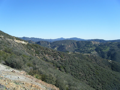 2009-01-17