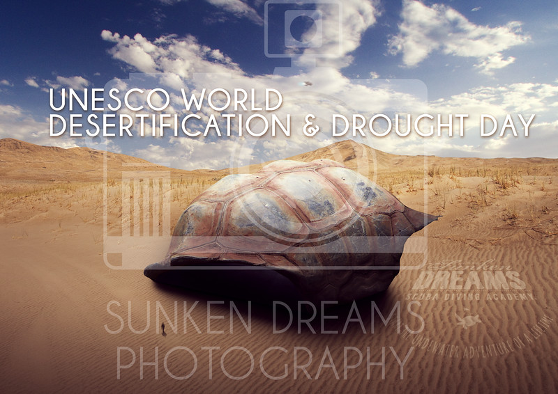 Unesco-World-Desertification-and-Drought-Day.jpg