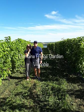 2018-09-06  Vignoble Domaine l'Ange Gardien (Roxane Lapointe)