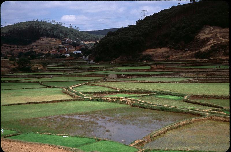 Madagasgar1_010.jpg