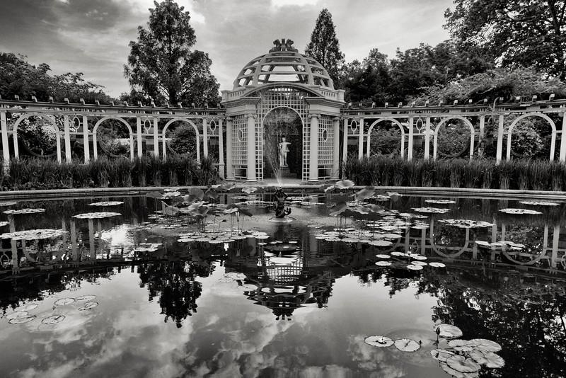 water-garden.jpg