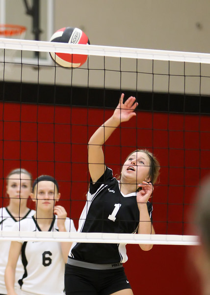 WC Volleyball vs South Newton 2014