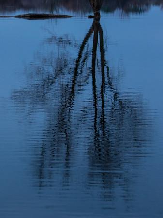 photography & fishing 2