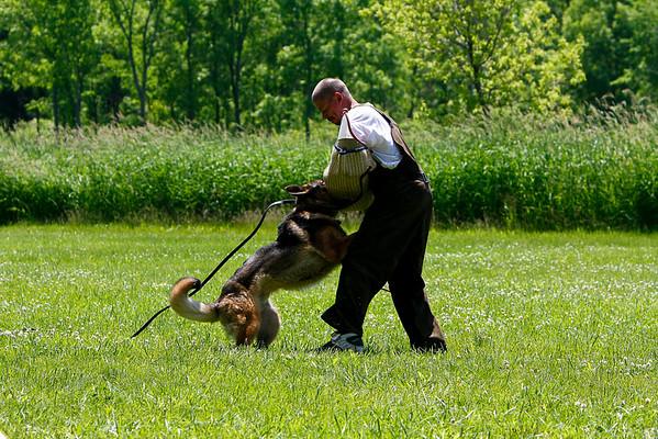 06-20-09 Schutzhund training