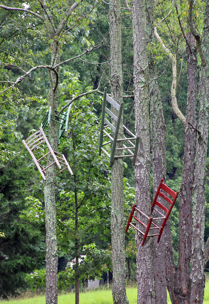 Chairs in trees