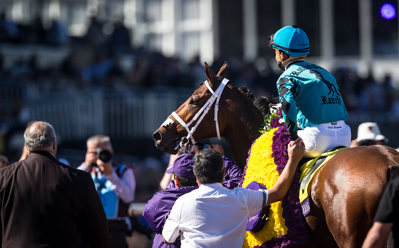 Stormy Liberal (Stormy Atlantic) wins the BC Turf Sprint at Del Mar on 11.4.2017. Joel Rosario up, Peter Miller trainer, Rockingham Ranch owners.