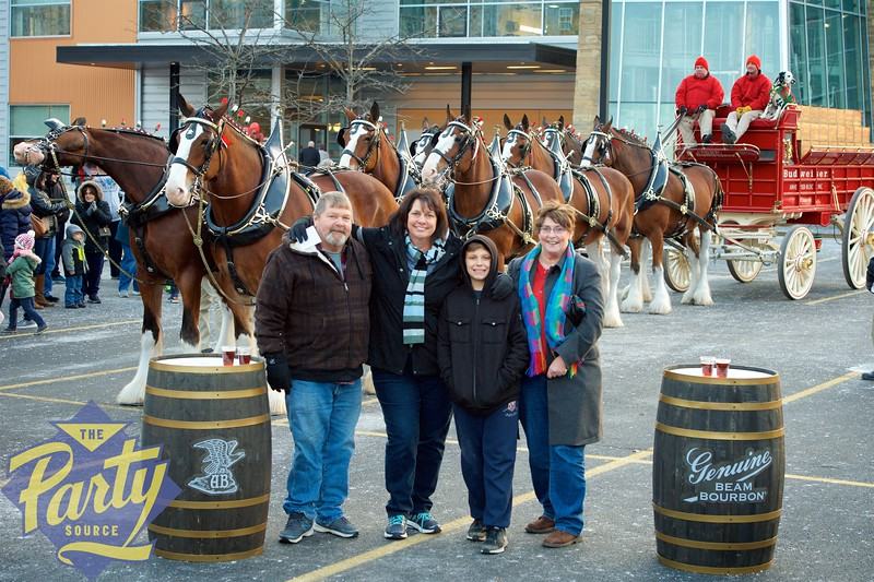 Clydesdale Portraits 222.jpg
