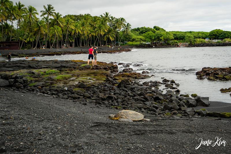 2019-12_Big Island-_DSC9258-2-Juno Kim.jpg