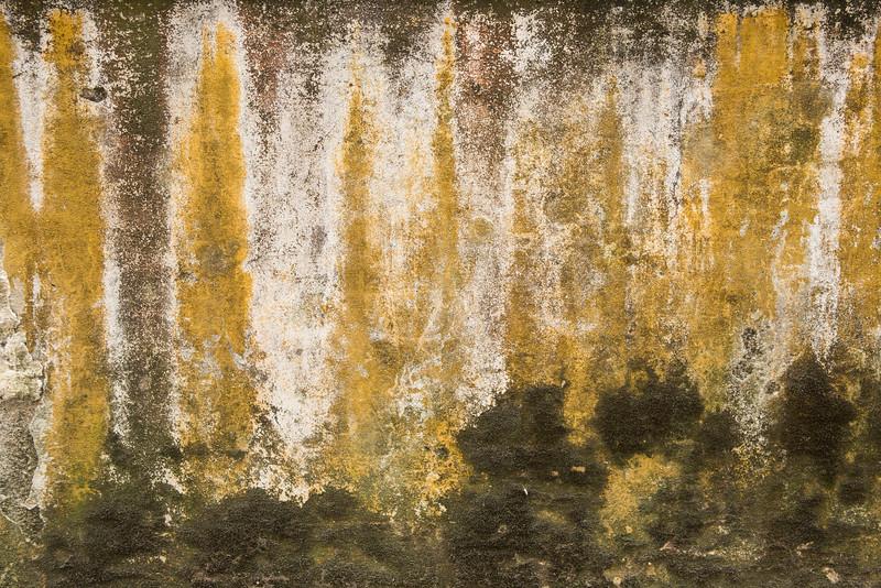 12-Lindsay-Adler-Photography-Firenze-Textures-COLOR.jpg