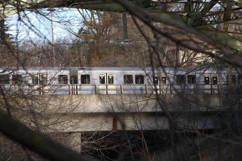 Train Through the Trees