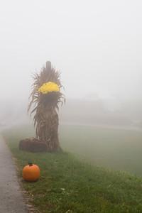 foggy-fall