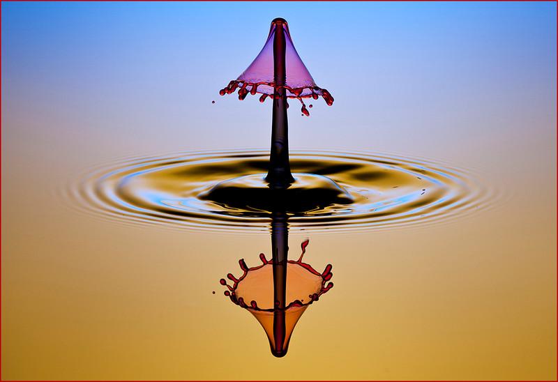 P_D_06_Scott Simons_Umbrella Reflections.jpg