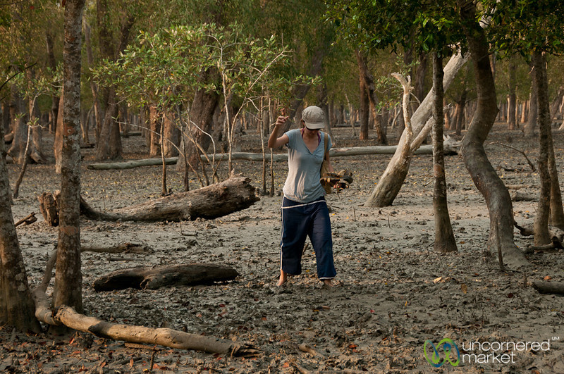 Barefoot in Mangrove Forest - Sundarbans, Bangladesh
